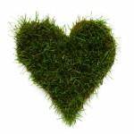 Heart Shape Made of Grass