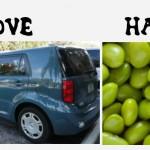 scion vs lima beans
