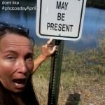 april 17 alligators