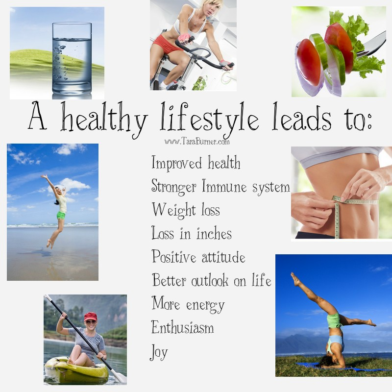 How To Lead A Healthy Lifestyle Essay