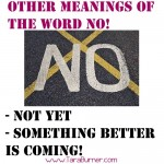 other meanings of the word no